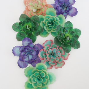 Wafer Paper Succulent Kits